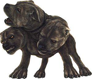 three-headed dog   cerberus three headed dog greek mythology