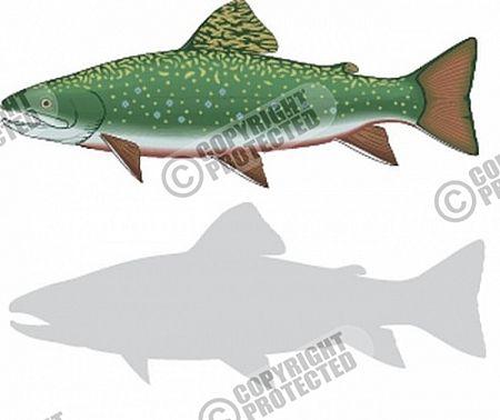 Free Sample Print & Cut Ready Fish and Marine Life Vector Image Download