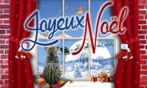 Je vous souhaite un excellent Noël, rempli d'amour et d'amitié