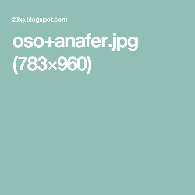 oso+anafer.jpg (783×960)