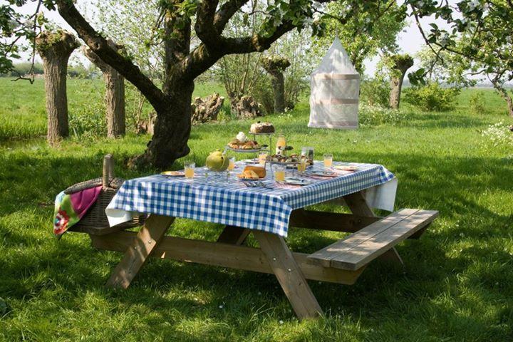 en daar hoort een boomgaard met picknickplekje bij, lekker in de zon!!
