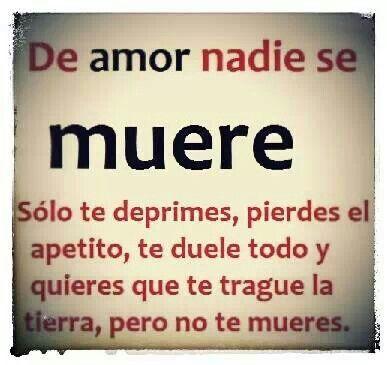 Por Amor nadie muere: