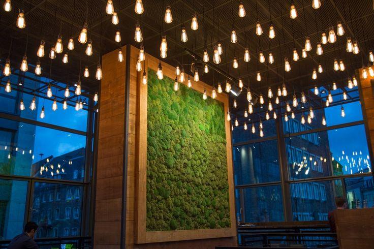 Moosbild Mooswand Restaurant Aachen