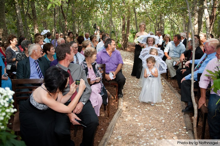 Forest wedding at D'aria