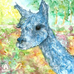 Alpaca Greeting card, gift card, print or cushion