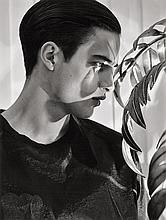 Laera, Vincenzo: Portrait (Alexander)