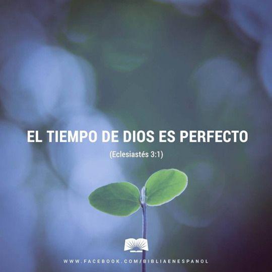 Biblia en Español
