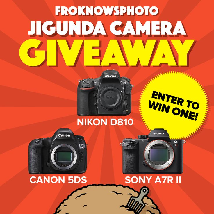 The Fro is giving away your choice of a Nikon D810, Canon 5Ds or Sony A7RII…
