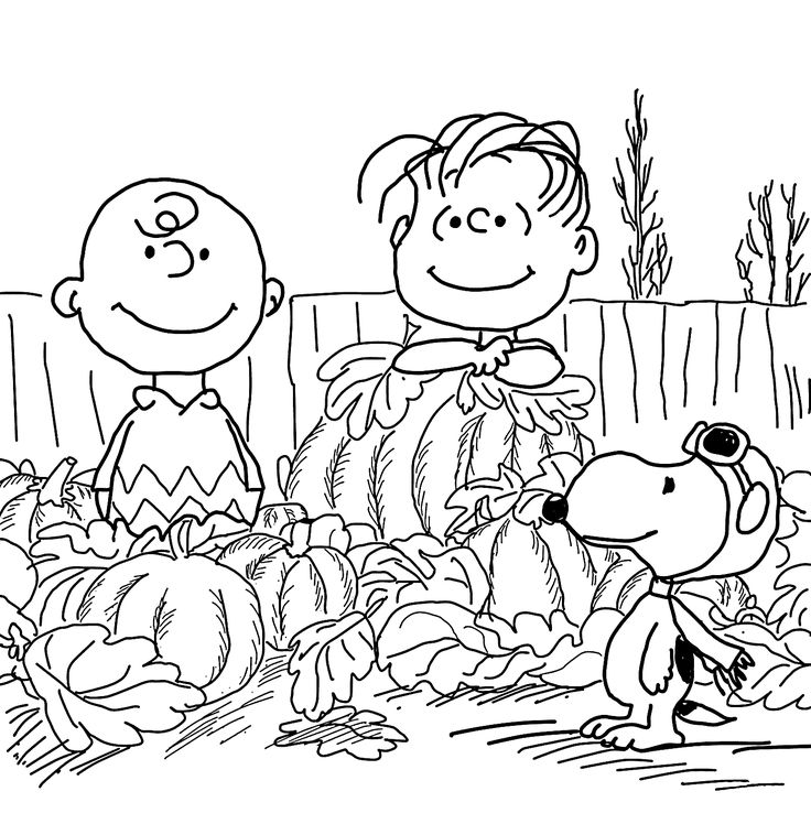 Happy Charlie Brown and pumpkins