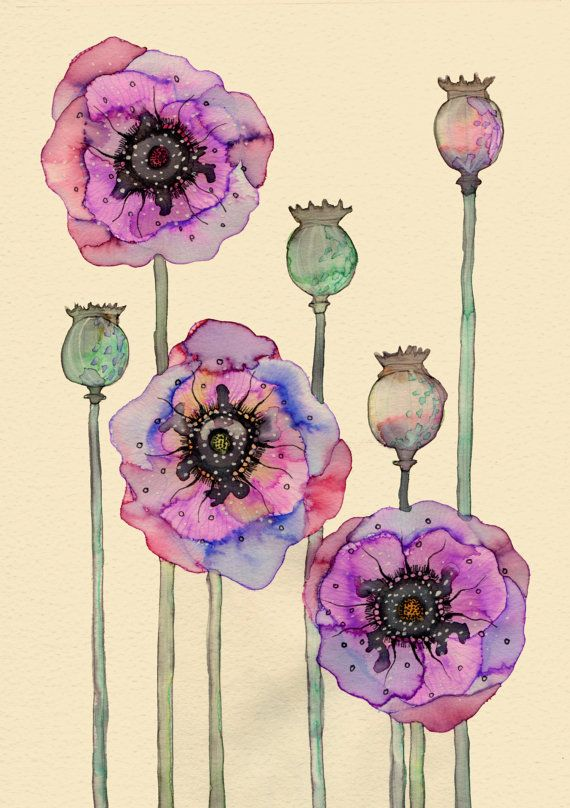 Wild Poppies 12 x 16 by Buttermoths on Etsy, £25.00