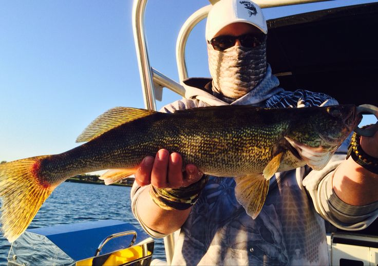 Adam Mamak with FishBum and Hoo-Rags yesterday on Quinte