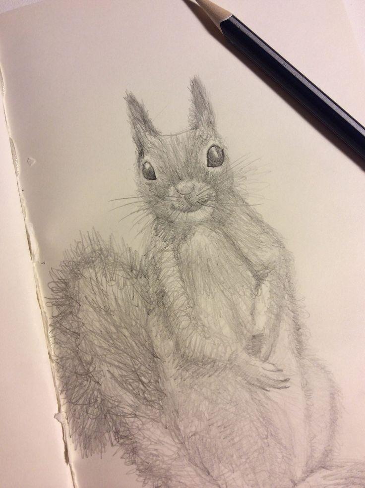 https://flic.kr/p/GD9BSi   Working a furry friend this evening...