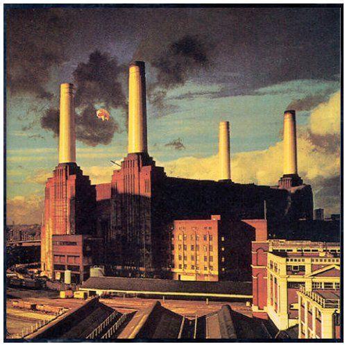 pink floyd album covers | Pink Floyd Animals Album Cover, Pink Floyd Animals CD Cover, Pink ...