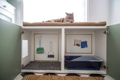 diy dog proof litter box - Google Search