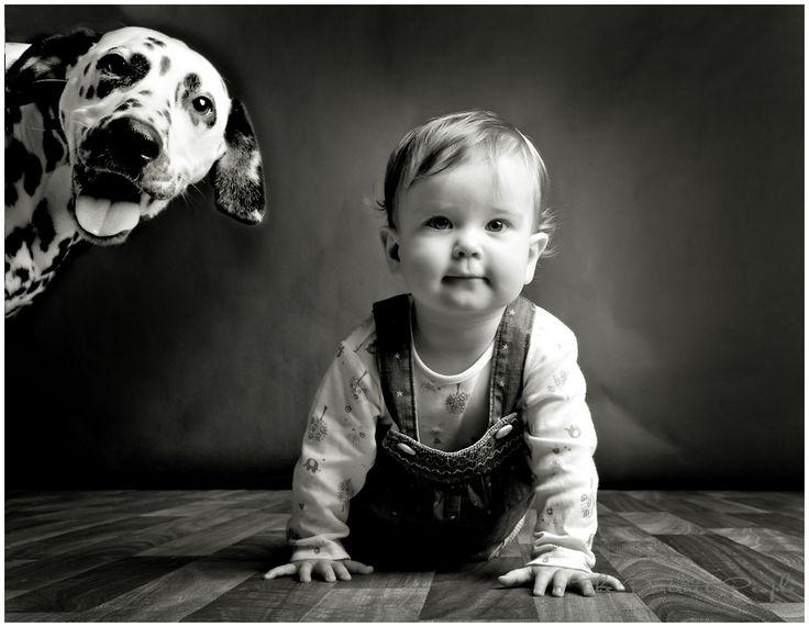 harrogate-pets-photos.jpg 899×698 pixels