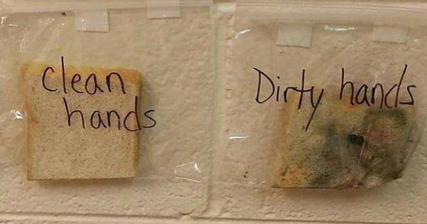 учительница при помощи трёх кусков хлеба объяснила детям, зачем нужно мыть руки перед едой