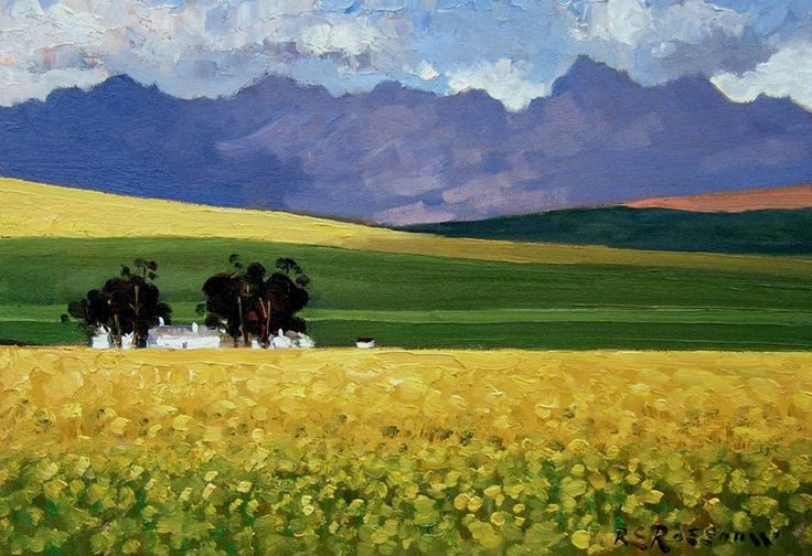 Canola Fields and Cottages, Overberg 30x40cm. SOLD