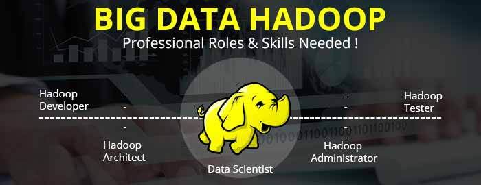 How to get Hadoop Developer Job - Roles and Responsibilities of a Hadoop Developer #HadoopDeveloperJobs #RolesofHadoopDeveloper #ResponsibilitiesofHadoopDeveloper #Credosystemz
