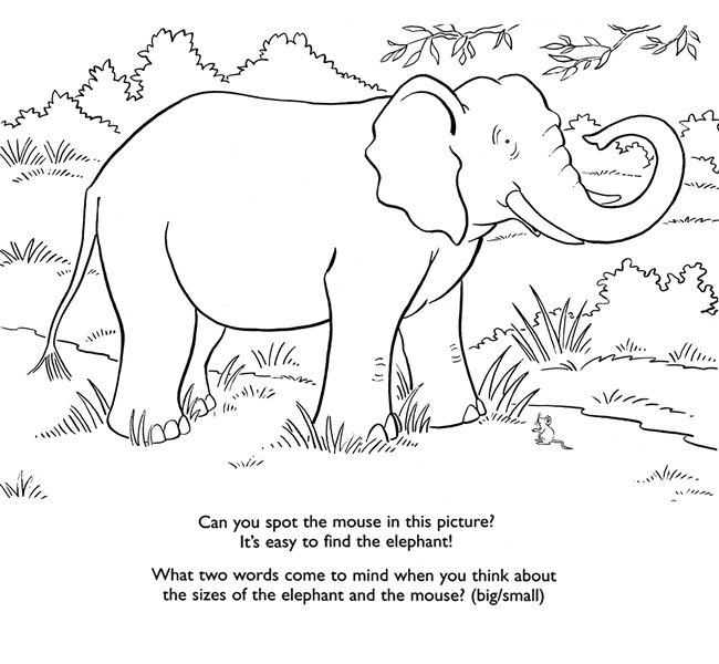 66 best Printable Elephants images on Pinterest Coloring pages - new elephant mandala coloring pages easy