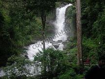 Irupu Falls, Coorg www.coorg.info