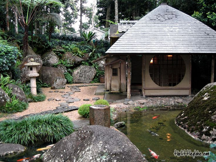 japanese style koi pond in bukit tinggi a hill resort just less than an