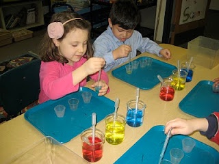 Kindergarten Color Chemistry: students used primary colors to create a multitude of colors with beakers and pipettes.