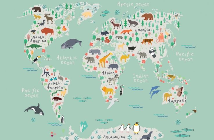 our safari kids map wall mural is a charming pictorial
