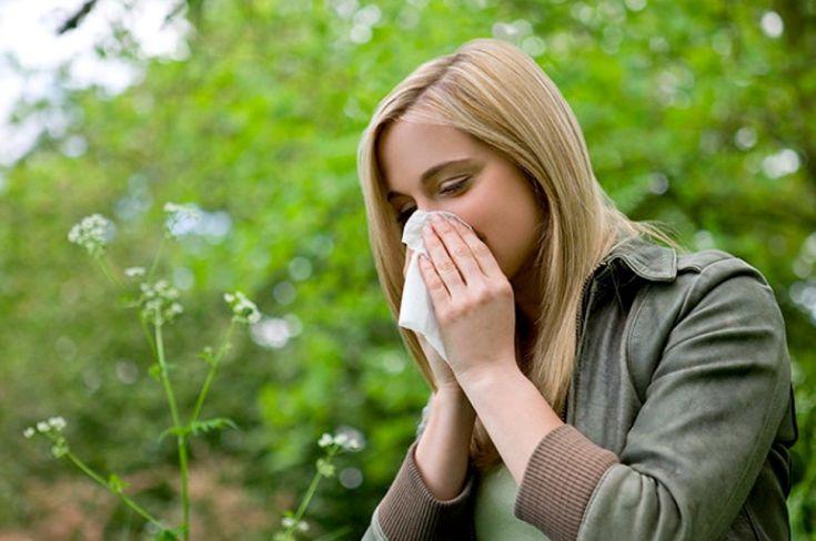 Alergias, el enemigo invisible