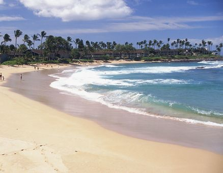 Maui, Hawaii: One of my favorite places on this planet! Great memories.....