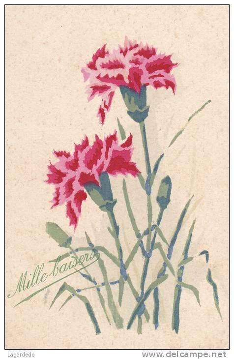 carnations…birthday flower for January