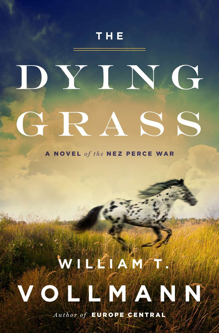 William Vollmann's 'the Dying Grass' Is The Reading Experience Of A Lifetime