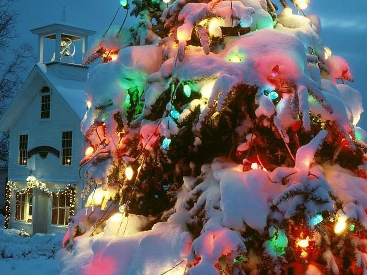 27 best christmas lights on snowy nights images on pinterest frank sinatra singing have yourself a merry little christmas growing up christmas music in my house consisted of sinatra connie francis andy williams solutioingenieria Gallery