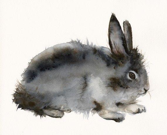 Roughian - arte de conejo