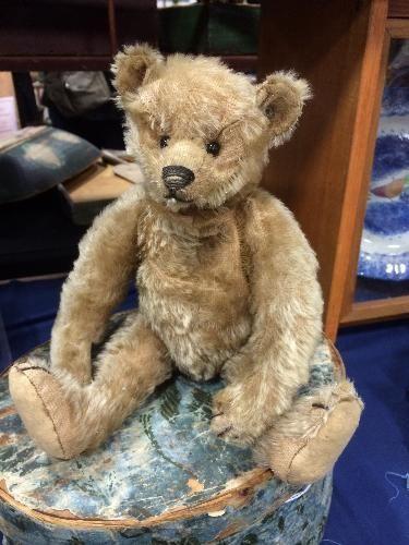 "Antique 13"" Gold Steiff Teddy Bear with FF Underscore Button"