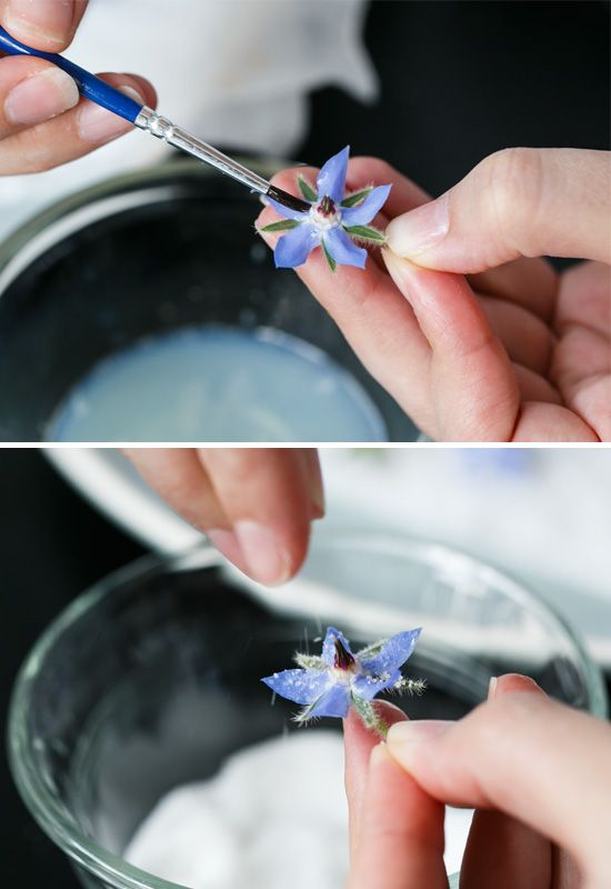 How to Make Candied Edible Flowers