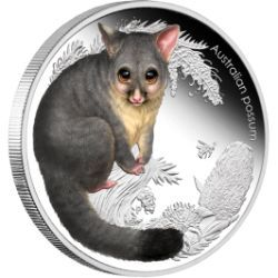 Irresistibly cute coin from a series depicting cute baby animals from the Australian bush | Australian Bush Babies II - Possum 2013 1/2oz Silver Proof Coin