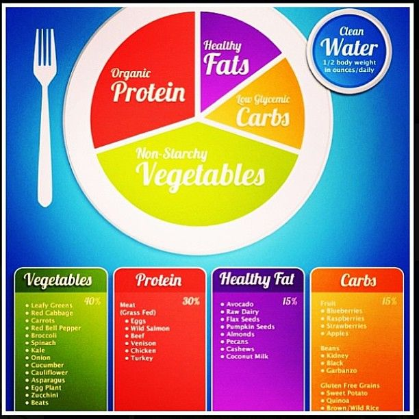 meal portion sizes to lose weight