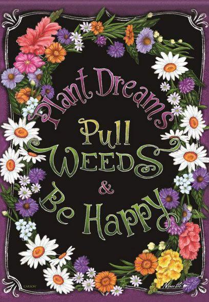 Plant Dreams/Weeds