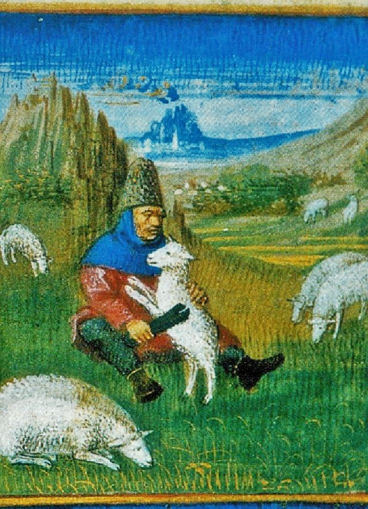 April+- Sheep Shearing