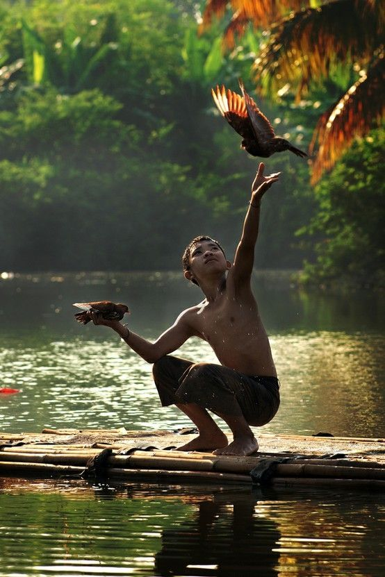 Fly Freely by Eka Novianto by Alchemia
