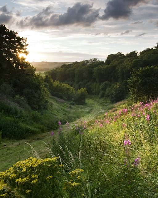 Yorkshire, England- England May be viewed as cold, wet and dreary but it is a country with areas of outstanding beauty. Sadly, the English countryside is being ripped up by property developers and the government who do little to try and preserve this once beautiful country.
