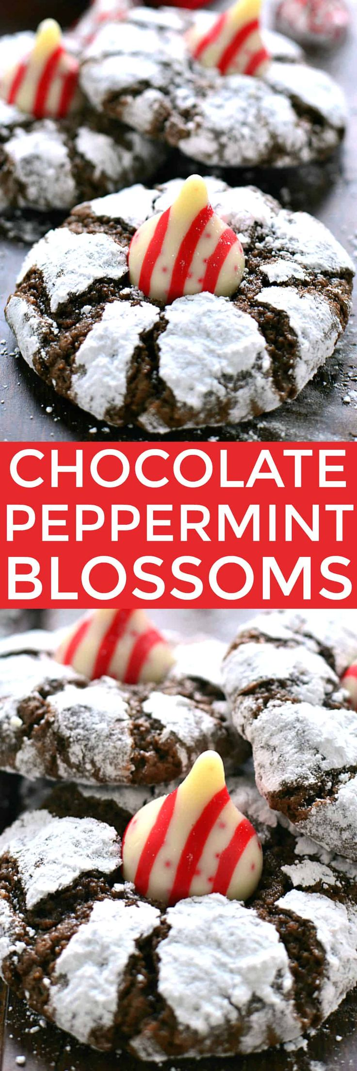 These Chocolate Peppermint Blossom Cookies are loaded with rich chocolate and peppermint and topped with a Candy Cane-flavored Hershey's Kiss. The perfect holiday cookies for mint (and chocolate) lovers everywhere!