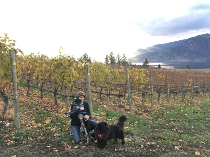YEAST, TENSION AND CRAP GRAPES.  Jacq Kemp is the winemaker for Moraine Estate Winery and is the focus of this incredible podcast. Meeting Jacq this past summer was a gift. Not only was I introduced to a wine that has become my absolute favorite, but Jacq is incredibly knowledgable and, luckily for me and you, loves to teach.