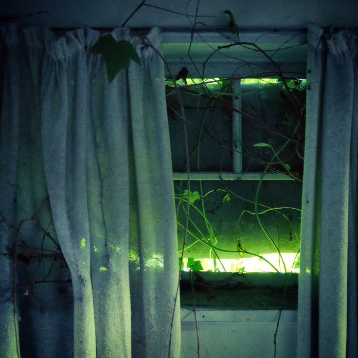 Abandoned window photography by David Juárez Ollé, Denmark
