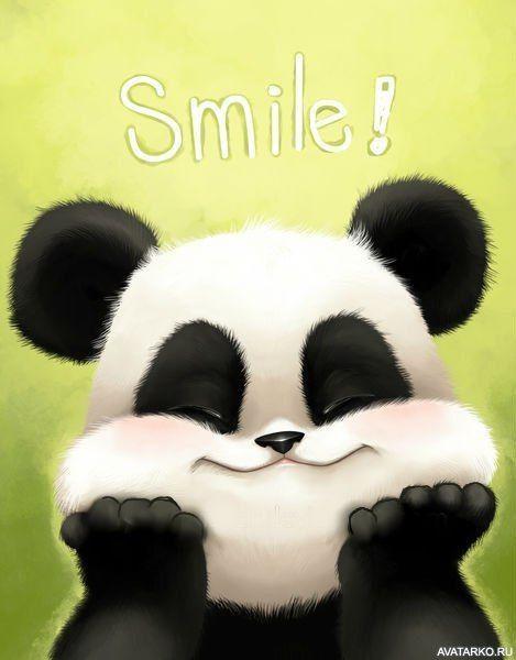 Картинки панды на аву, добрыми