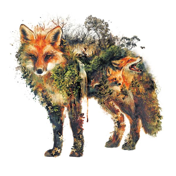 The Red Fox - NeatoShop