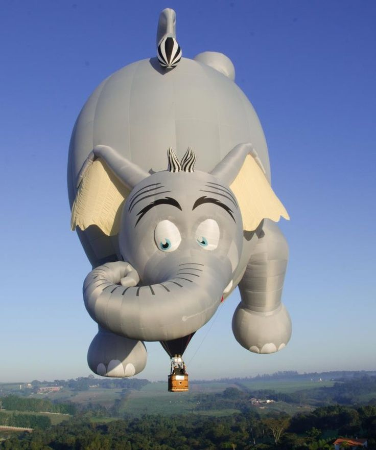 1000 Images About Cool Rides On Pinterest: 1000+ Images About Hot Air Balloons On Pinterest