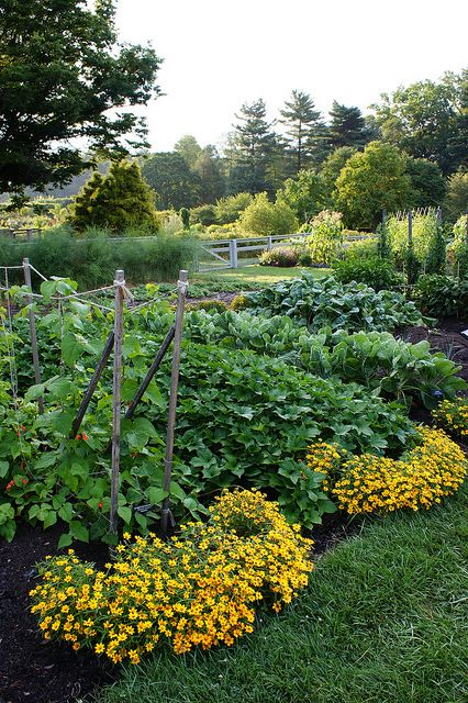 Add Curb Appeal for the Vegetable Garden  plant flowers at the ends of the  rows. 17 Best images about Vegetable Garden Ideas on Pinterest   Gardens