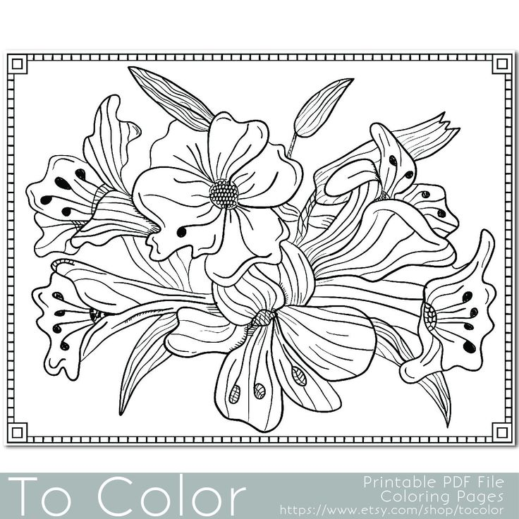 Youll Enjoy Coloring This Lilies Bunch Of Flowers Floral PDF Page From To
