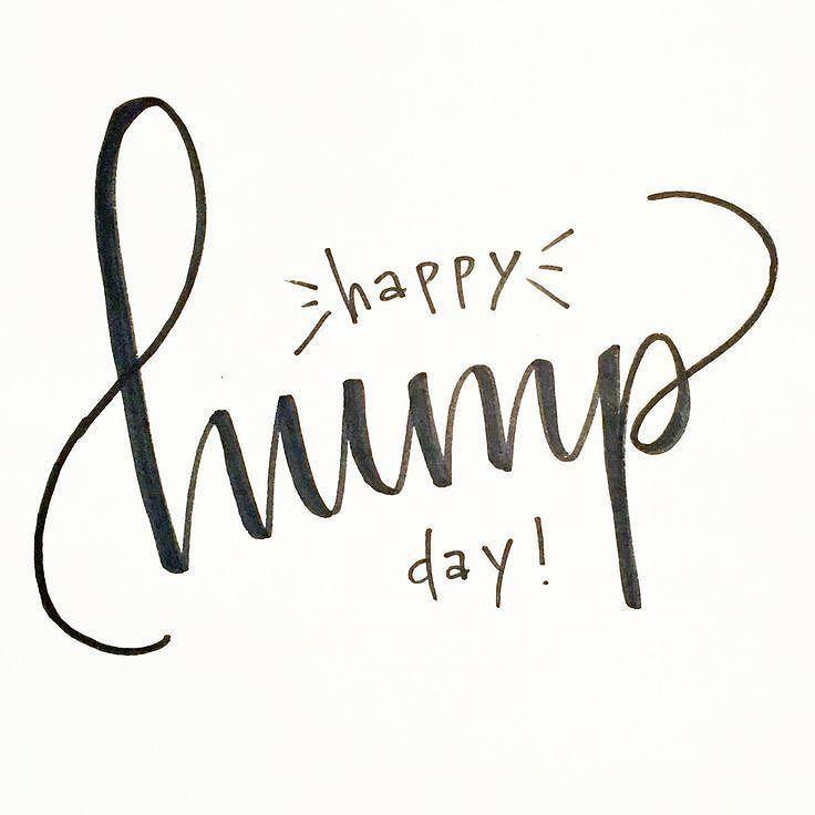 Happy Wednesday!  . . . . #humpday #wednesday #love #november #fall #happy #goodmorning #happyhumpday #smile #life #happyday #midweek #halfway #halfwaythere #spreadkindness #belove #mylovelymuse
